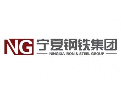 宁夏钢铁集团有限责任公司